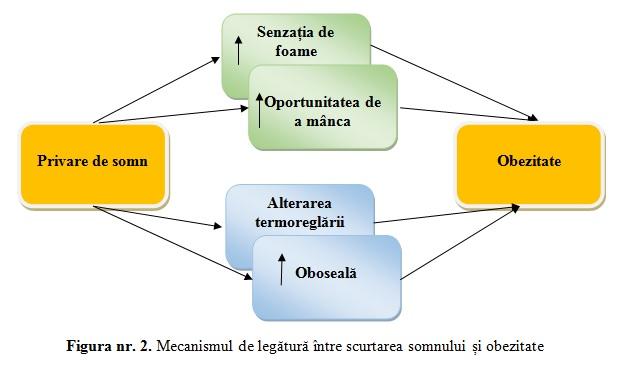 Legătura dintre obezitate și privarea de somn | Fundația Somn - Subiecte De Somn